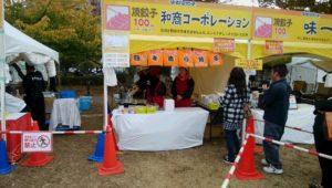 20th utsunomiya gyoza festival 1